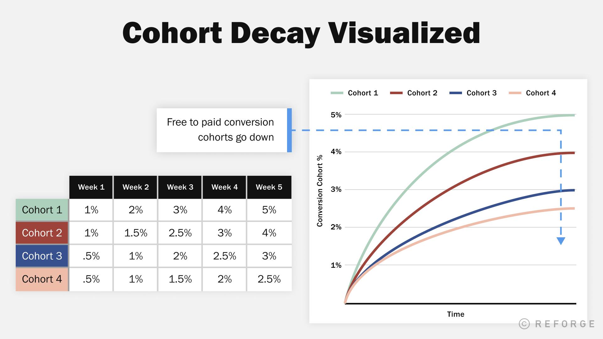 cohort_decay