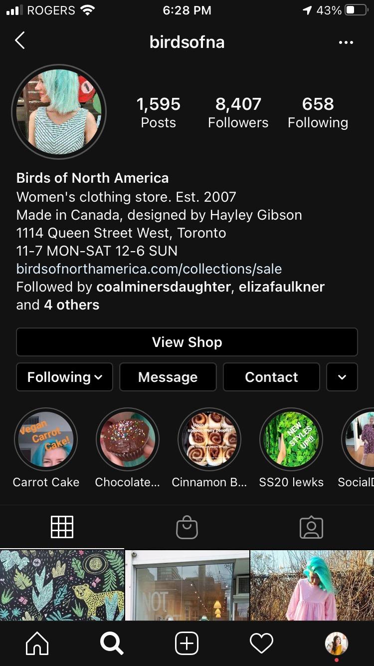 Страница бизнес-профиля Birds of North American в Instagram
