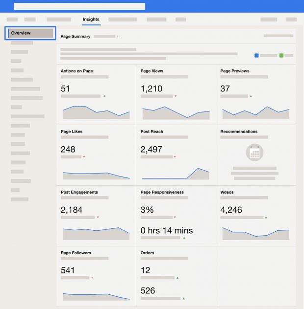 Скриншот панели обзора аналитики Facebook
