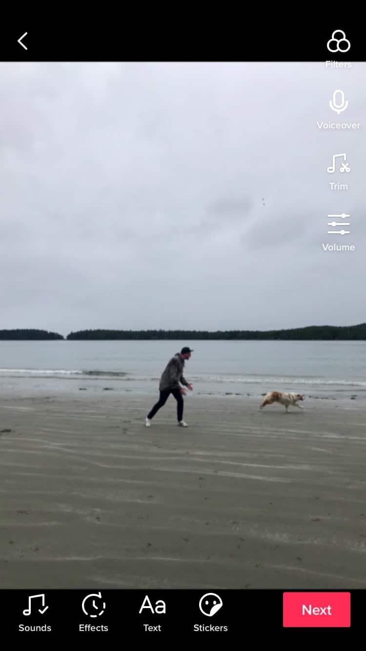 человек на пляже с собакой
