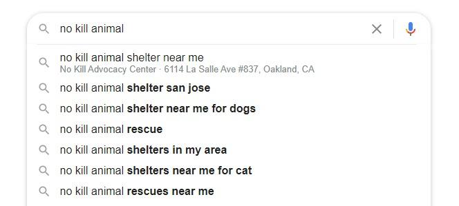 Изображение поиска в Google по запросу «Приют для животных без убийства»