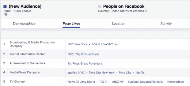 Снимок экрана панели управления Facebook Audience Insights