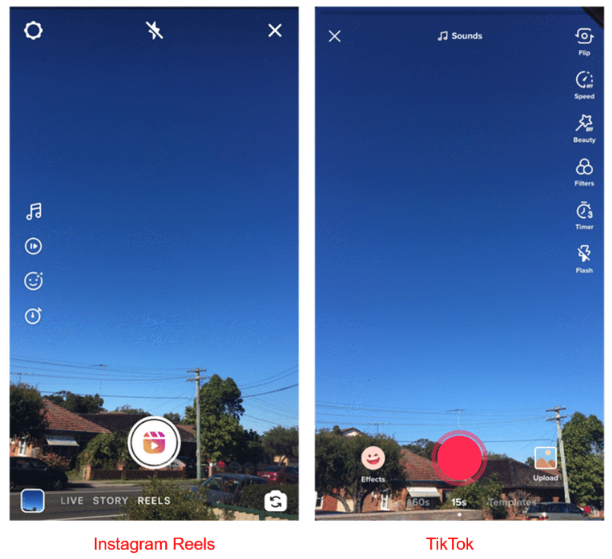 Сравнение Instagram Reels и TikTok