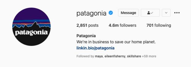 В биографии Patagonia Instagram изложены ценности их бренда