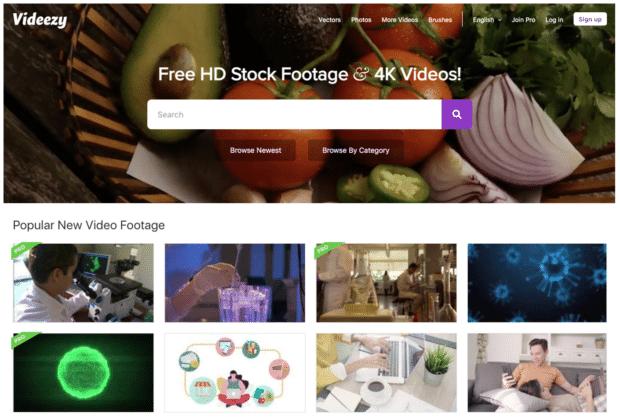 сайт с бесплатными стоковыми видео videezy
